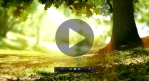 Our environmental promise video